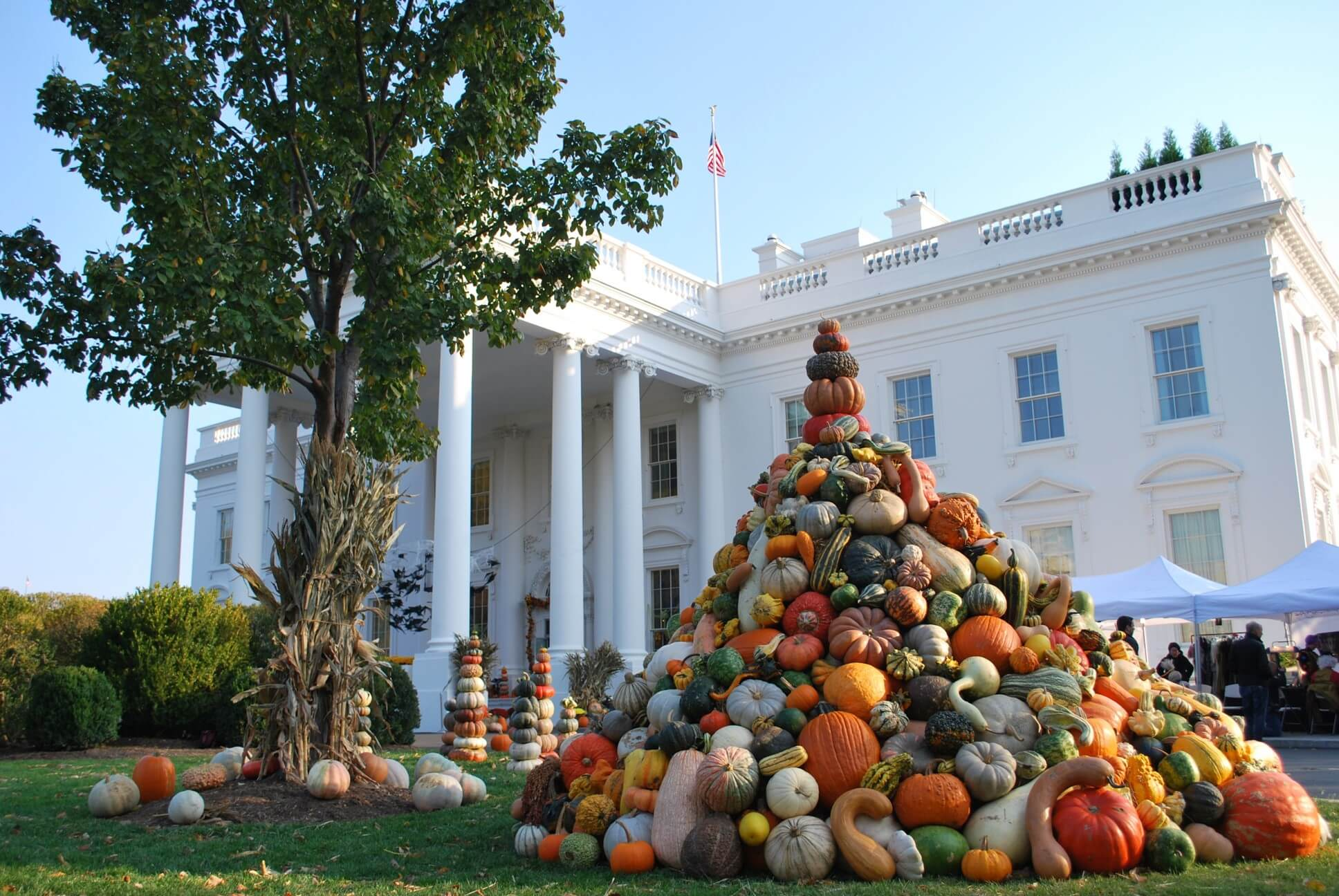The Great Pumpkin Patch - Arthur, Illinois - Branding - The White House